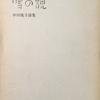 雪の貌 中川悦子詩集