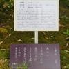 万葉歌碑を訪ねて(その1078)―奈良市春日野町 春日大社神苑萬葉植物園(38)―万葉集 巻二十 四四七六