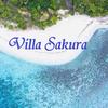 【パラワン島ホテル選び】ヴィラサクラはどうですか??