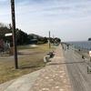 横須賀 海辺つり公園 釣果