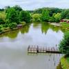 太陽の池(千葉県船橋)