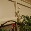 リースの玄関ドアへの飾り方 吊るすための便利グッズ
