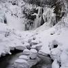「札幌でしかできない50のこと」全部行ってみた。№46滝野すずらん丘陵公園