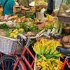 野菜価格の高騰