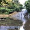 猛暑の三連休。養老渓谷で水遊び、バーベキュー🍖