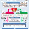 NSAIDs服用中の変形性膝関節症(膝OA)→中止→【プラセボ&CBT vs メロキシカム】