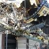 二条城で芽吹く前のパワーをヒシヒシと感じる、と、お茶スポット【2019年・京の桜】