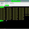 複窓のSSH -Xでは、別の端末でも同名のttyは同時に扱えない(?)