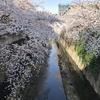 東京微地形神田川