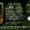 【金曜日の有名銘柄】鍋島 純米吟醸 山田錦【FUKA🍶YO-I】