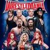 WWE5・2「PAYBACK 2016」WWEネットワーク観戦記。再戦に次ぐ再戦!AJvsレインズ!