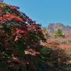 紅葉の妙義山 中間道を歩く