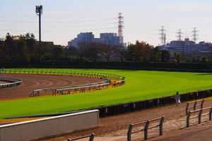 【競馬ブログ】「気まぐれウマ放談」 快速牝馬 真の短距離女王へ~スプリンターズステークス