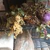 花と一緒のささやかな暮らしを楽しむ  in  盛岡