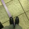 本日の革靴 バーニーズニューヨークオリジナル ストレートチップ