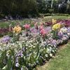 【アラ還さんぽ】横浜の穴場。春の「里山ガーデン」に行って春を感じてきました。