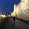 【イスラエル旅】嘆きの壁、岩のドーム、聖墳墓教会。聖地「エルサレム」を観光、ガイドはヘブライ大学留学生(中東中米旅#4)
