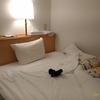 21時20分 ホテルAZ 内子で就寝