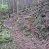 登山道の維持管理問題と山小屋・山岳会の努力