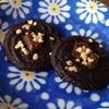 絞り出しチョコクッキー