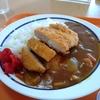 札幌市豊平区平岸 レストラン そよ風でカツカレー