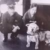 【TOCANA】海外版「忠犬ハチ公」物語4選に感動の涙が止まらない! 亡き主人の墓から14年離れず、教会のミサに欠かさず参加も…!