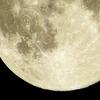 宇宙のリズムに合わせるとうまくいく♡【月のリズム・新月について】