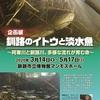 [特別展]★釧路のイトウと淡水魚 展