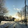 【告知】薮川SNOWTREKKING&石窯きのこPIZZA