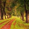 正しい道を歩んでいるかどうか迷った時はワクワクする方を選ぶ