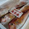 2018年6月22日 小浜漁港 お魚情報