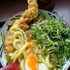 「讃岐釜揚げうどん 丸亀製麺」カレーうどん「ねぎ」大量トッピング