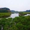 種子島マングローブパークと雄龍・雌龍の岩。種子島旅行part5