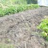 土と戯れる時間