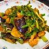 【辛口爽快】ナスとセロリの麻婆炒めレシピ