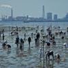 🌊木更津海岸にて潮干狩り & 📷防水コンデジ COOLPIX W300の弱点