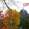 右田ヶ岳登頂