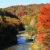 夕張・滝の上公園の紅葉01 2014年10月12日撮影