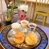 【BOTANIC COFFEE KYOTO 】ボタニックコーヒー京都🌿オシャレな半地下カフェとうさぎ🐰の岡崎神社⛩