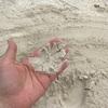 なにこの砂、最高のクトビーチ!