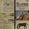 【馬の博物館】ポニーセンター
