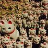 初詣にオススメ!招き猫発祥の地、豪徳寺