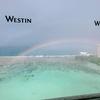 ウェスティンのスウィートルームはややこしかった。