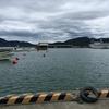 家族連れにもやさしい釣り場(福井・小浜新港)
