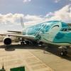 【搭乗記】ANA フライングホヌに乗っていくハワイ② NH183 (HNL-NRT) エコノミークラス(座席、機内食)