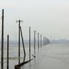 【千葉】江川海岸の海中電柱を見に行こう【木更津】