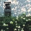 夏休み旅  アートビオトープ(ホテル編)