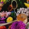 【京都】花手水と季節の御朱印が人気の勝林寺へ