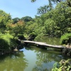 【ライフ】清澄庭園で日本の夏を感じる
