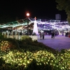周南冬のツリーまつり(2)天空のライティングフラワーショー(山口県周南市・青空公園)